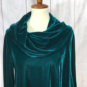 Soft Surroundings Asymmetrical Velvet Tunic